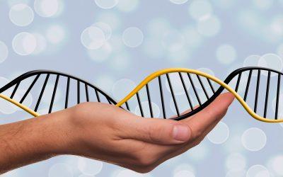 Edição genómica de plantas pode melhorar segurança alimentar de forma sustentável