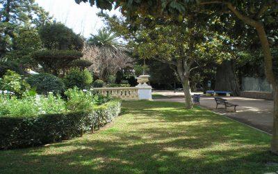 Dia Internacional do Fascínio das Plantas celebrado em Elvas