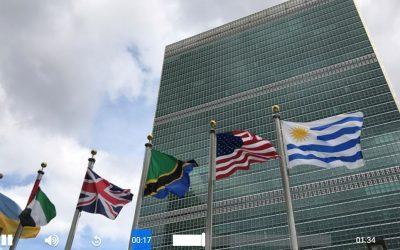 ONU realiza pré-cimeira sobre sistemas alimentares